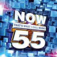 Cover  - Now That's What I Call Music! 55 [US]